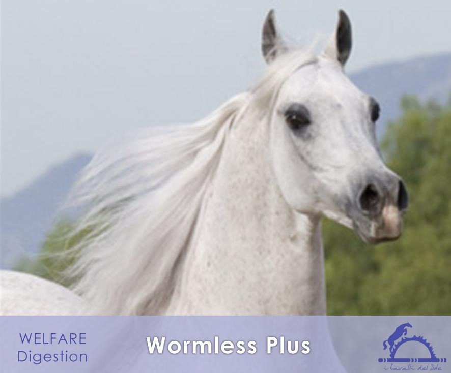 WormlessPlus_iCavallidelSole_
