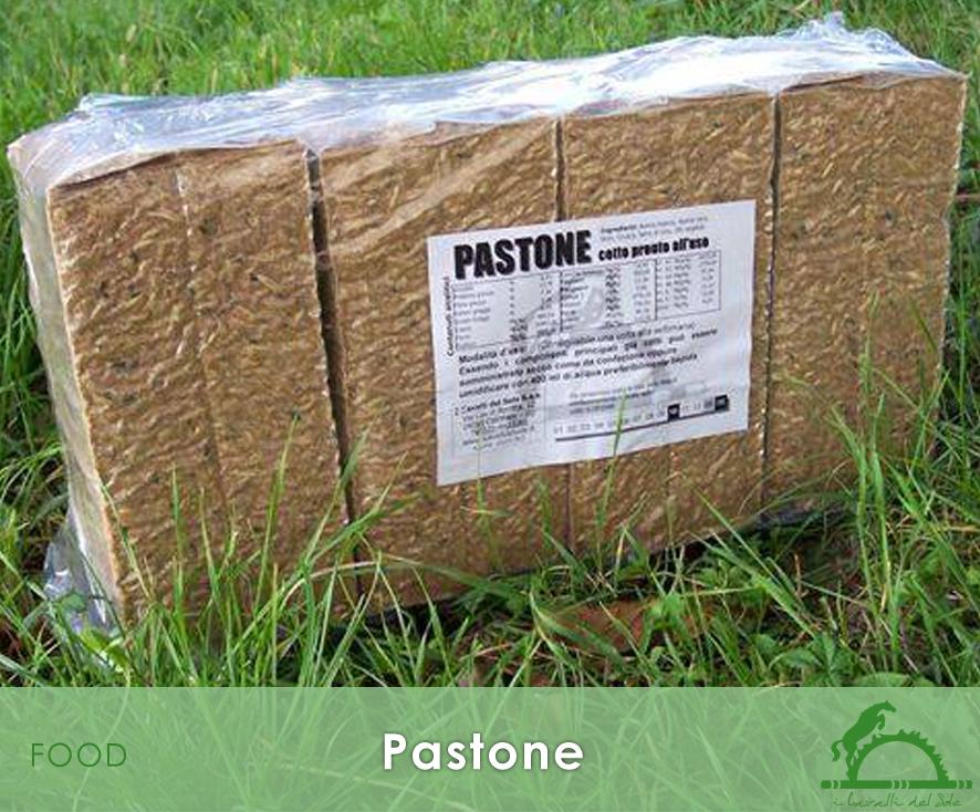 Pastone_iCavallidelSole_