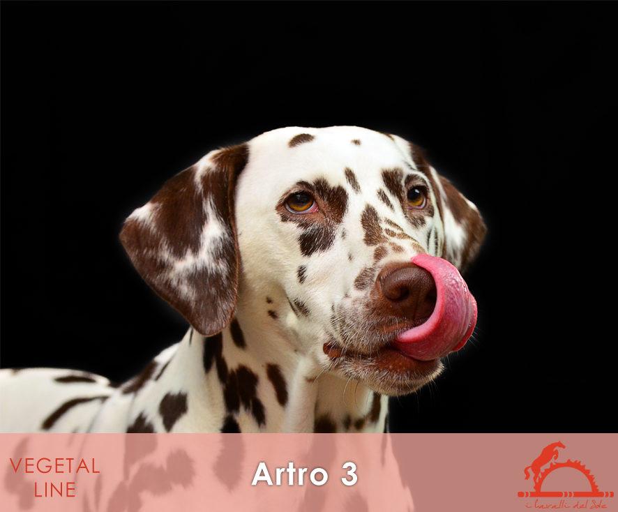 ARTRO3_iCavalliDelSole_