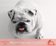 MANIFESTAZIONI-CUTANEE_iCavalliDelSole_