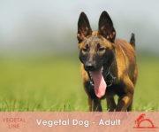 VEGETAL-DOG-ADULT_iCavalliDelSole_