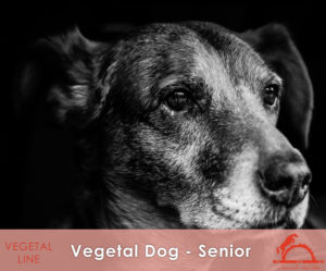 VEGETAL-DOG-SENIOR_iCavalliDelSole_