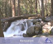 1-1-X_Renodren_1_iCavallidelSole_