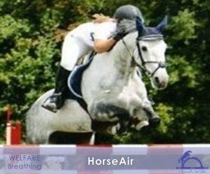 HorseAir_iCavallidelSole_