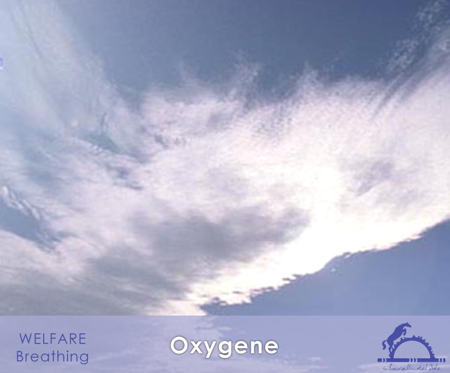 Oxygene_iCavallidelSole_