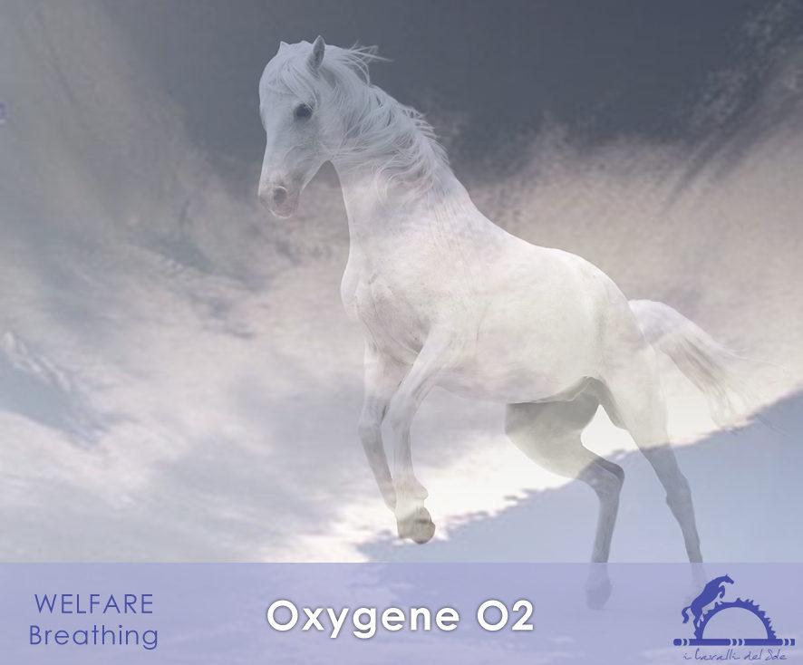 OxygeneO2_iCavallidelSole_