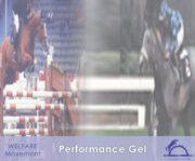 Performance Gel_iCavallidelSole_