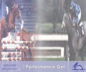 Performance Gel_iCavallidelSole_