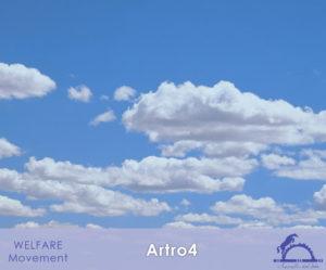 Artro4_iCavallidelSole_