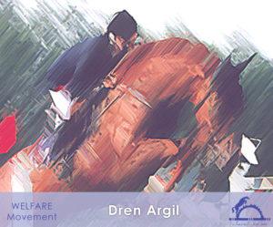 DrenArgil_iCavallidelSole_
