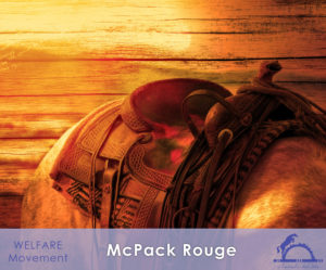 McPackRouge_iCavallidelSole__