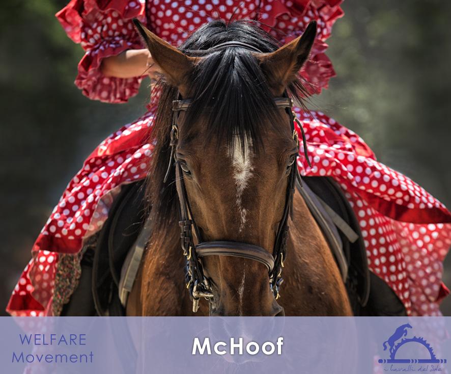 1-3-20_McHoof_1_iCavallidelSole_