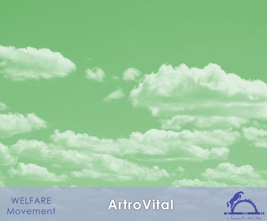 ArtroVital_iCavallidelSole_
