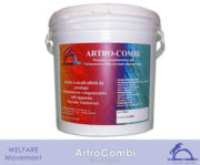 ArtroCombi_iCavallidelSole_[Packaging]