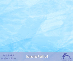 1-4-X_IdrataPellet_1_iCavallidelSole_