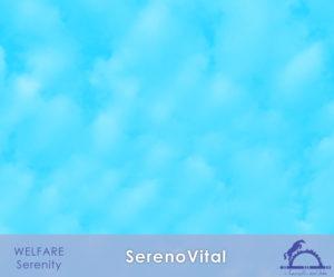 SerenoVital_iCavallidelSole_