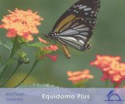 EquidomoPlus_iCavallidelSole_