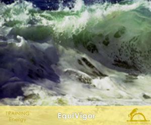 EquiVigor_iCavallidelSole_