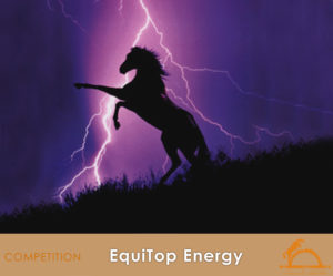 EquiTopEnergy_iCavallidelSole_