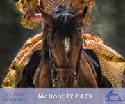 McHoof-12PACK_iCavallidelSole_