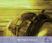 McPack-Fasce_iCavallidelSole__