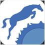 whatsapp - i cavalli del sole