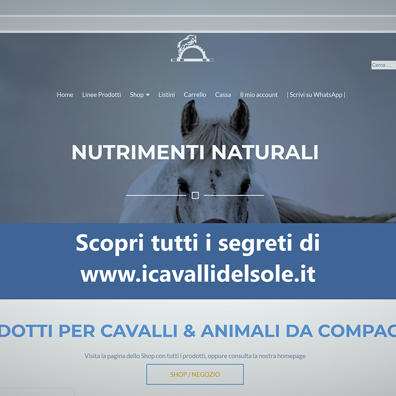 Istruzione-all-utilizzo-del-sitoweb __i-cavalli-del-sole__